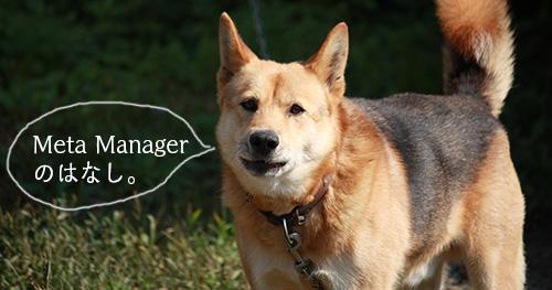 プラグインMeta Managerを入れました。